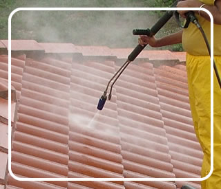 Shingle and tile roof cleaning